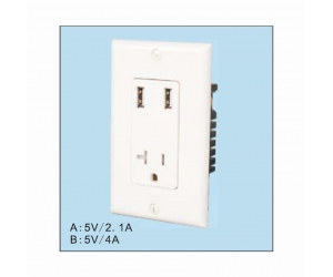 USB-33 USA style wall plate dual USB charger with TR outlet